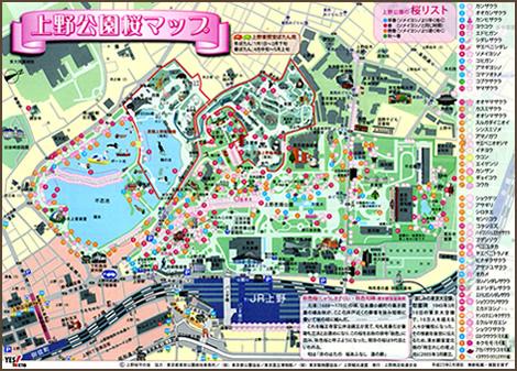 上野公園桜マップ