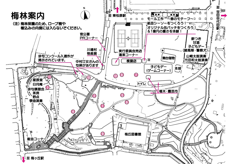 世田谷梅まつり会場MAP