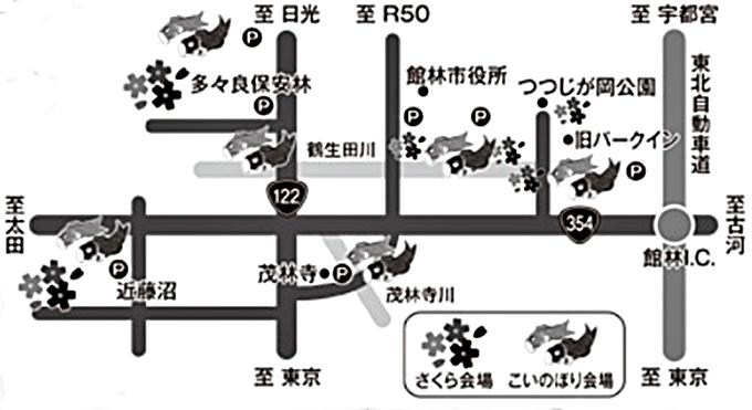 こいのぼりの里まつりと館林さくらまつり会場MAP